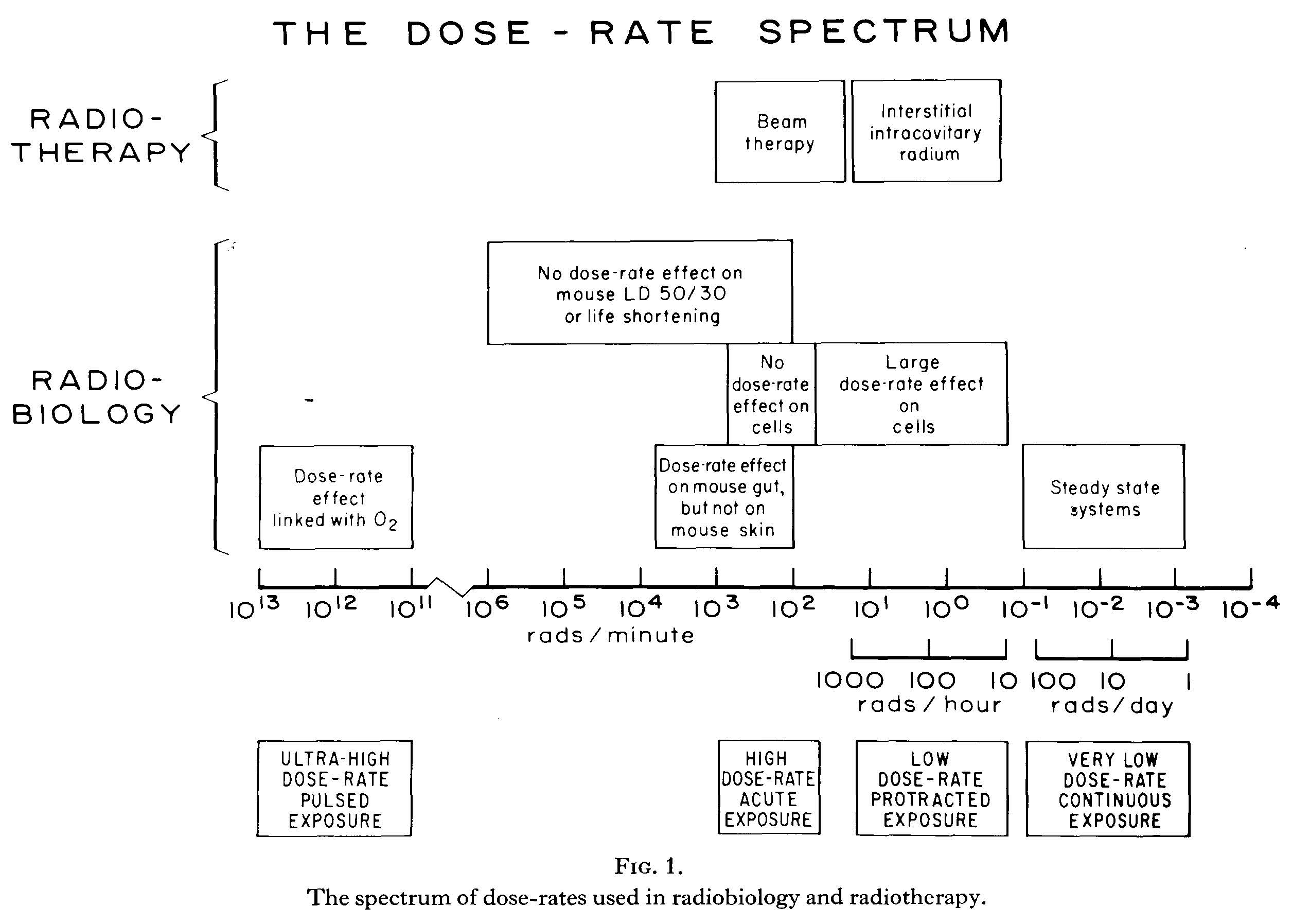 Dose-rate spectrum in radiotherapy and radiobiology
